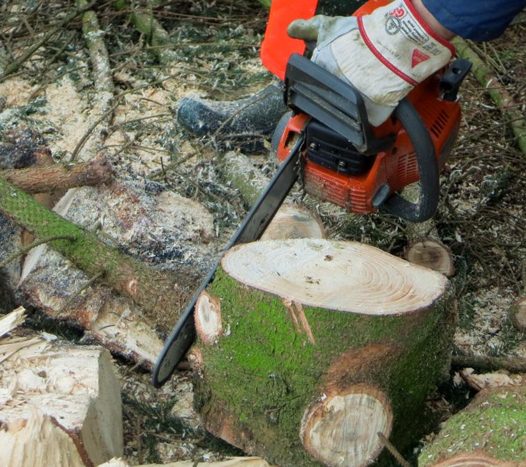 Zeit zum Holzmachen